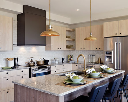Homes for Sale in Kanata North