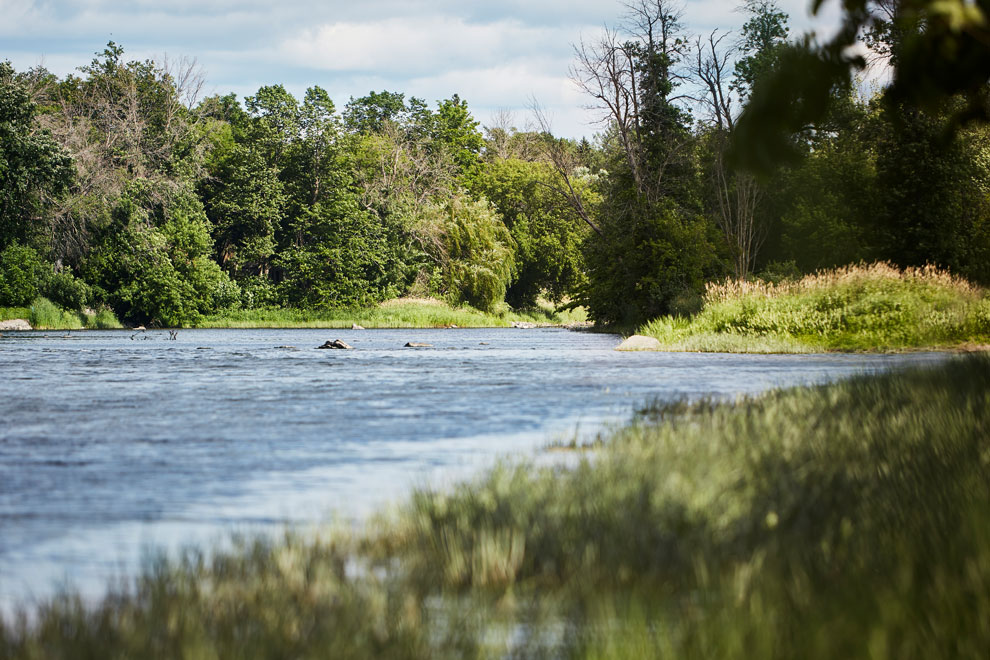 View of the Rideau River. Discover nature and things to do outside in Manotick near Mahogany.