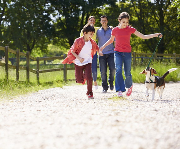 Photo of a family running with a dog