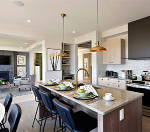 Bright Modern Kitchen for a Single Family Home for Sale in Arcadia, Minto Communities in Kanata
