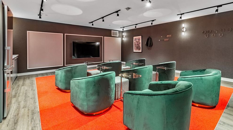 Common Area - Theatre Room