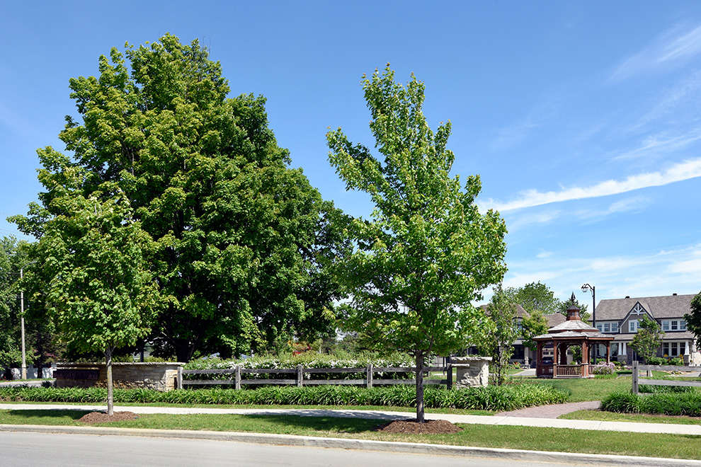 Road in Mahogany - a community in Manotick, by Minto Communities