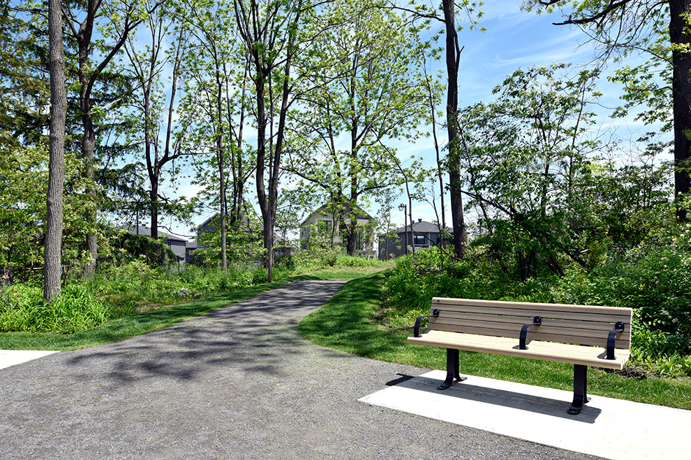 Beautiful sunny pathway with bench - Mahogany, Manotick - a community by Minto Communities