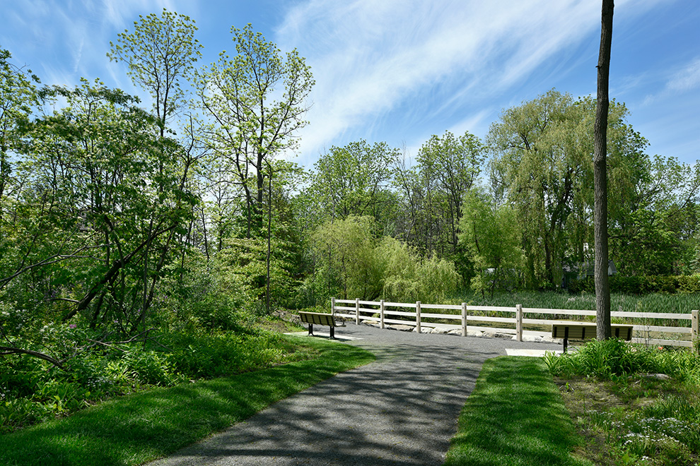Walkway to bench near water in Mahogany, Manotick - a community by Minto Communities