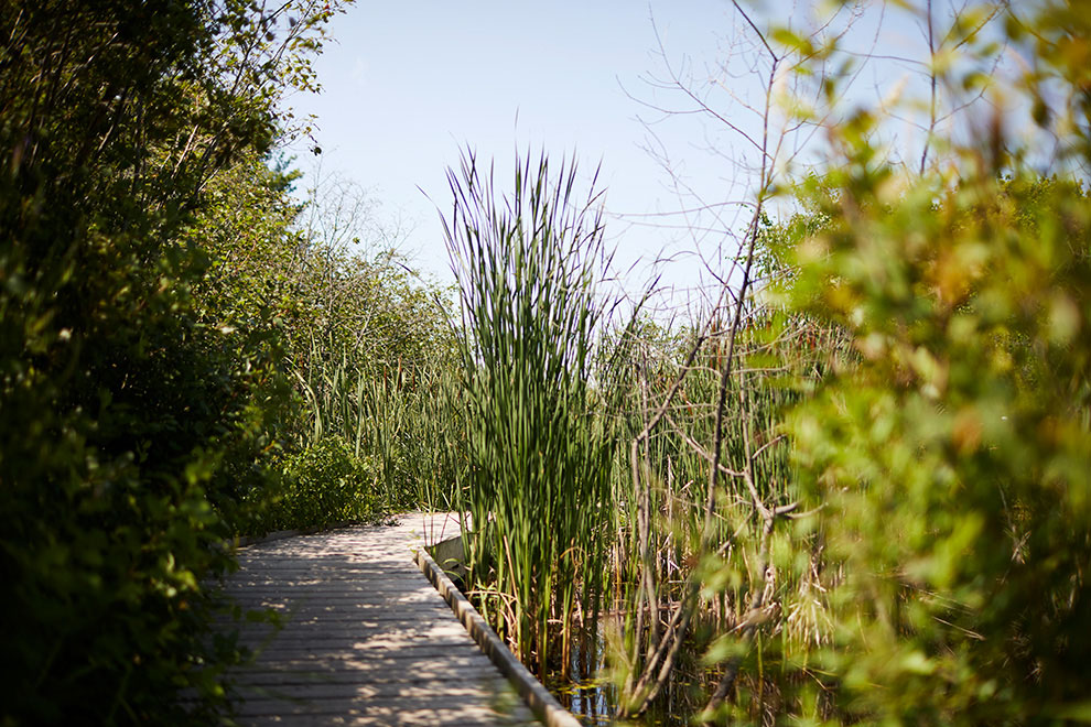 Nature is at your fingertips in Kanata North