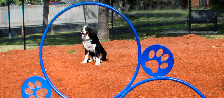 Dog Park available to Navaho Apartment residents