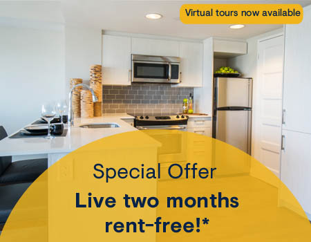 Luxury Apartments for Rent in Downtown Ottawa