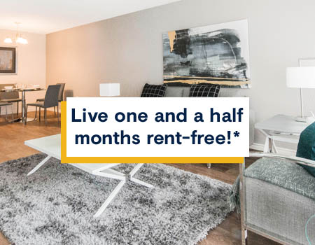 Pet friendly apartments for rent in Calgary